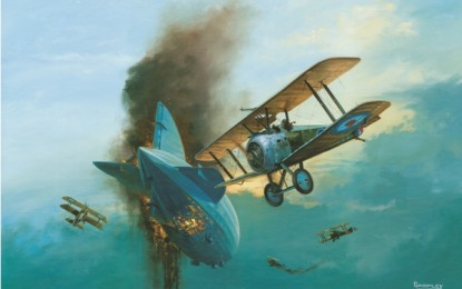 EXCLUSIVE Biplane picture gallery by Mark Bromley