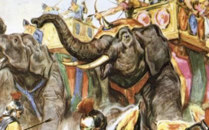 War Culture – Animals of war