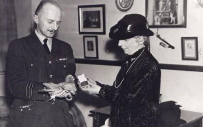WAR CULTURE – The Dickin Medal