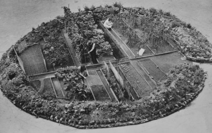 BEHIND THE IMAGE: Westminster Cathedral victory garden, 1944